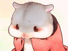 仓鼠可爱图片大全