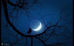 弯月唯美意境图片