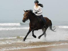 骑马图片唯美