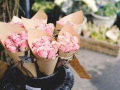 鲜花唯美意境图片