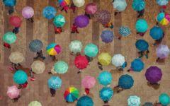 雨中雨伞图片唯美