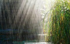 下雨天图片唯美