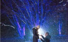 下雪天男女浪漫图片
