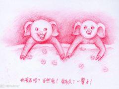 猪的说说爱情图片