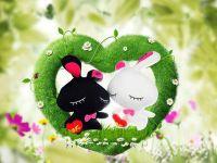 情侣兔子图片大全