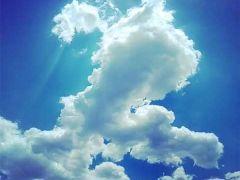 中老年微信头像女天空