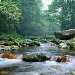 大自然风景微信头像