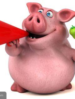 两个猪抱的得图片表情