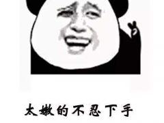 熊猫套路表情包图片