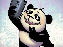 熊猫表情图不带字图片搞笑