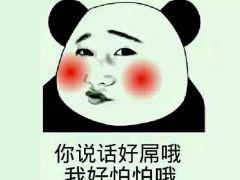 我是熊猫斗图表情包