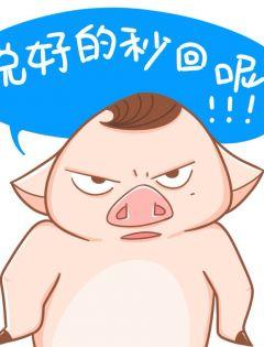 猪表情图片