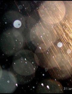 下雨天背后浪漫图片