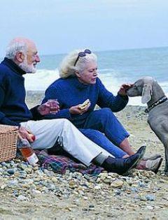 海边老夫妻浪漫图片唯美