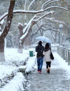浪漫情侣雪中背影图片