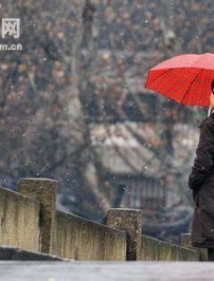 情侣撑红伞浪漫背影图片