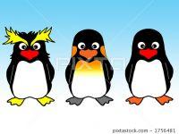 企鹅照大全可爱图片