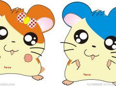 老鼠呆萌图片大全可爱图片
