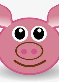粉色壁纸猪头可爱图片