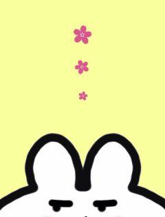 兔兔聊天背景情侣图片