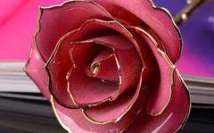 微信头像三朵玫瑰花