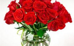 玫瑰花头像图片大全微信