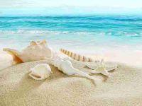 浪漫海边情侣头像图片