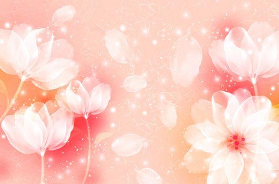 浪漫唯美意境花朵图片