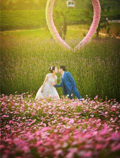 好看的图片唯美浪漫小清新壁纸