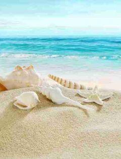 浪漫沙滩图片大全