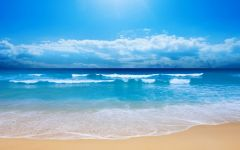 海边浪漫表白图片