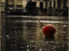 雨中唯美伤感图片