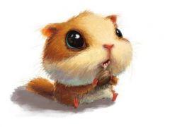 呆萌小动物动漫图片