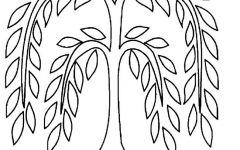 柳树简笔画