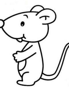 小老鼠简笔画大全可爱