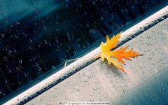 雨天图片唯美伤感图片图库