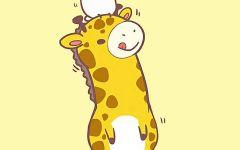 可爱动物动漫图片壁纸