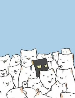可爱萌猫动漫图片