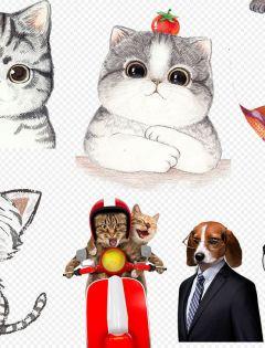 猫猫可爱动漫图片