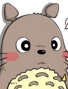 龙猫卡通可爱动漫图片大全