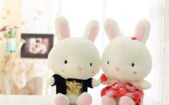 兔熊情侣图片大全可爱