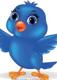 小鸟图片卡通可爱图片