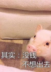 猪猪头像可爱图片带字