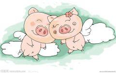 两只小猪猪爱情图片