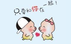 两只猪的爱情图片微信