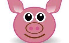 大猪脸可爱图片卡通