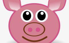 猪头手绘可爱图片