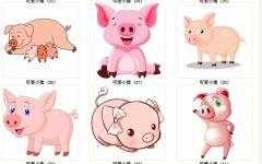 猪猪可爱图片大全