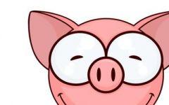 小猪头像可爱情侣