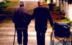 老人爱情背影图片